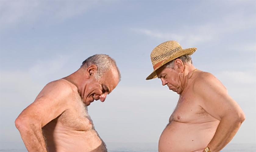 denise milani lingerie